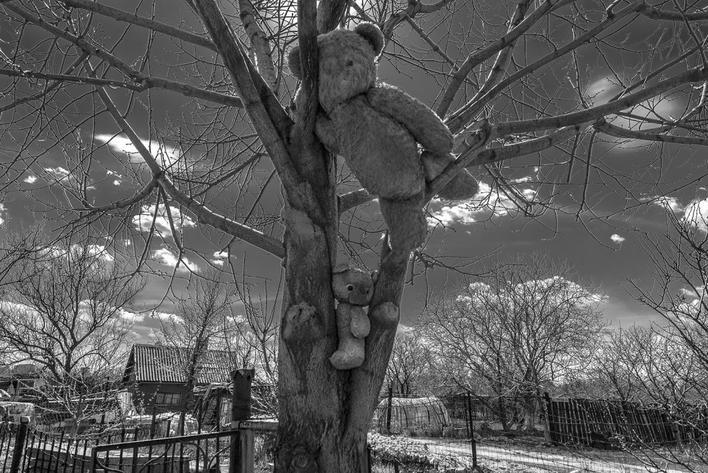 Suuri nalle ripustettuna puun oksalle. Mustavalkoinen kuva.