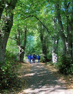 CMC Finlandin henkilöstöä kävelemässä syksyisellä metsässä.